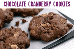 Gluten Free Cranberry and Chocolate Cookies